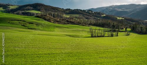 Fotografía Hillside landscape with landslide (on the left)