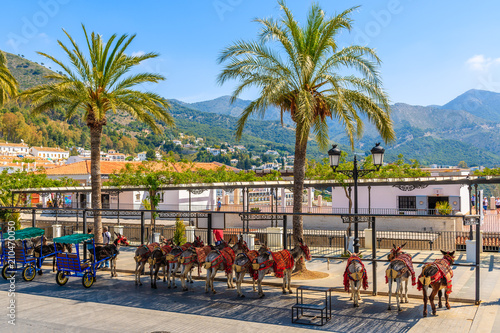 Deurstickers Mediterraans Europa MIJAS VILLAGE, SPAIN - MAY 9, 2018: Donkeys waiting for tourists in white village of Mijas, Andalusia. These animals are serving as taxi in mountain villages of southern Spain.