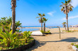 View of beautiful beach with palm trees near Marbella town, Andalusia, Spain