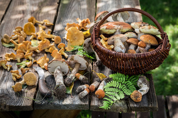Fresh and healthy wild mushrooms full of flavour and aromatic