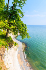 Fototapeta Morze Chalk cliffs and blue sea in Jasmund National Park, Ruegen island, Baltic Sea, Germany