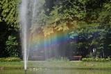 Fototapeta Tęcza - Tęcza w parku