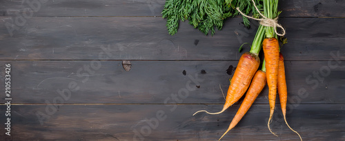 Freshly washed whole carrots with leaves Canvas Print