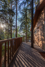 Wooden House In The Forest With The Rays Of The Setting Sun