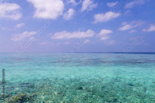 Fotografie, Obraz  blue