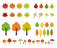 秋の植物・紅葉|イラ...