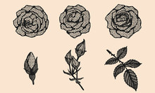 Rose Vector Lace By Hand Drawi...