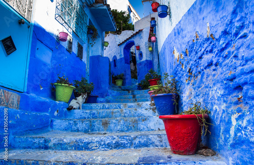 Deurstickers Blue walls of Chefchaouen city medina in Morocco with bright doors and colorful flower pots on the walls with sun light
