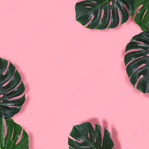 Naturalne różowe tło z ramą potwora pozostawia