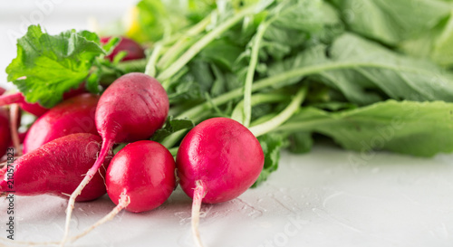Fresh red radish Summer harvested red radish. Growing organic vegetables.