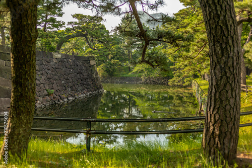 Foto op Aluminium Oude gebouw The green moat surrounding the walls of the Imperial Palace in Tokyo - 1