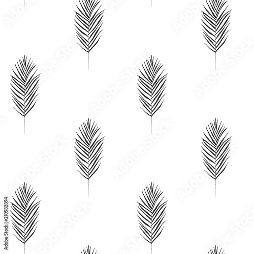 Vector seamless hand drawn pattern with areca palm in vintage graphic style Canvas Print