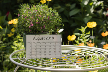 Calendar of the month August 2018 is on a garden table among flowers. Concept: English garden & summer.