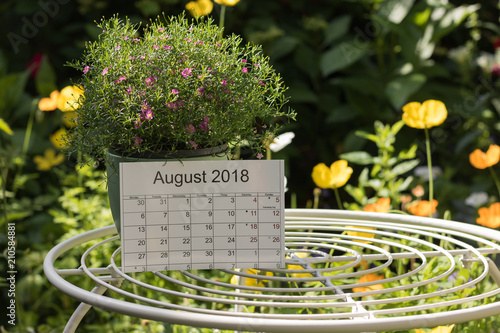 Obraz Calendar of the month August 2018 is on a garden table among flowers. Concept: English garden & summer. - fototapety do salonu