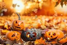 HerbstHintergrund Natur Hallow...
