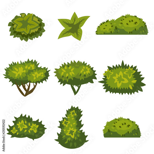 Obraz na plátně Set of bushes in cartoon style for decoration on your works, grass in cartoon st