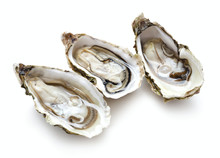 Set Of Oysters Isolated On Whi...