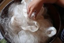 絹の製糸工場