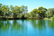 Large Pond In Beautiful Natura...