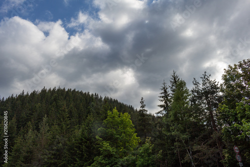 Spoed Foto op Canvas Grijze traf. Hill, trees and cloudy sky