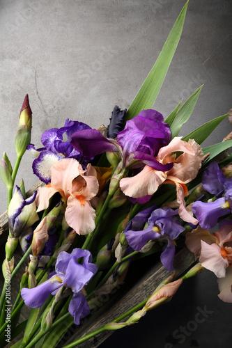Fresh iris flowers mix top view