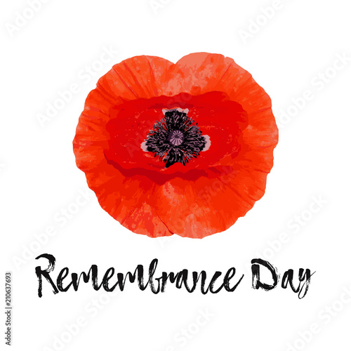 Remembrance Day vector card, banner Anzac Day. Canvas Print