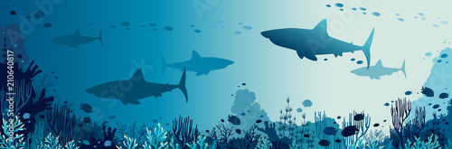 Sharks, coral reef, underwater sea and fishes. Fototapet