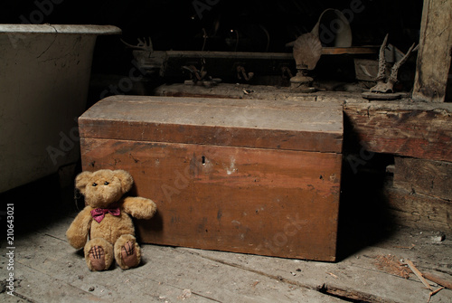 Fotografie, Obraz  Childs teddy bear and an old chest in the dusty attic space of an old house