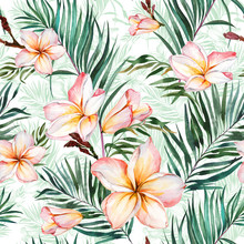 Plumeria Flowers And Exotic Palm Leaves In Seamless Tropical Pattern. White Background.  Watercolor Painting. Hand Drawn And Painted Floral Illustration.