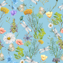 Seamless Pattern Of Summer Wildflowers