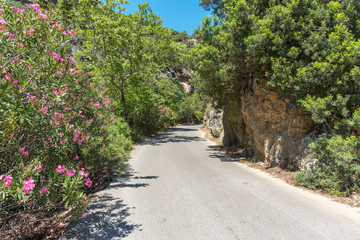 The road to Anidri, a mountain village approx 3 km remote from Paleochora, leads through a spectacular ravine