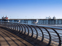 Seagulls Perched On Railings On The Promenade In Blackpool With The North Pier In The Background On A Sunny Summers Day With The Beach And Sea In The Background