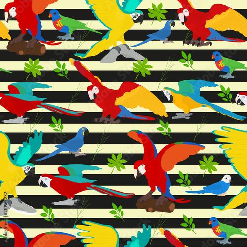 bezszwowy-wektorowy-tlo-z-papugami-i-tropikalnymi-roslinami