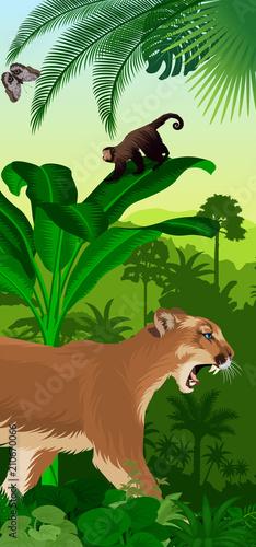 Vector Jungle rainforest vertical baner with puma cougar (Puma concolor) or moun Canvas Print