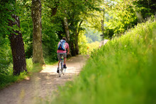 Sportive Man Cycling In Sunny Park In Hot Summer Day. Switzerland, Europe
