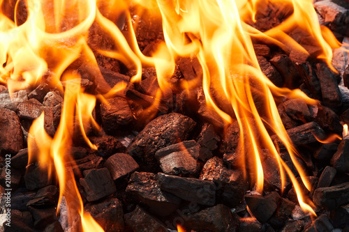 Tuinposter Grill / Barbecue Orange wild fire burning on black coal and ash, prepared for barbecue grill