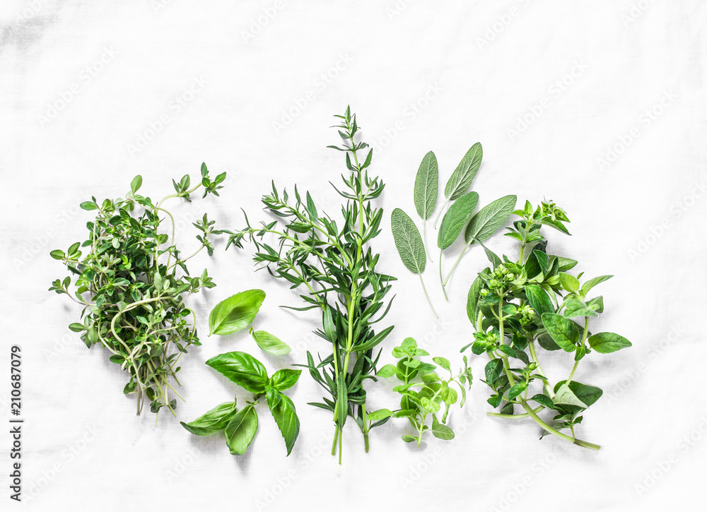 Fototapety, obrazy: Range of fragrant garden herbs on a light background-tarragon, thyme, oregano, basil, sage, mint. Healthy ingredients, top view. Copy space, flat lay