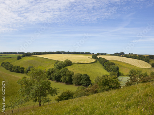 Deurstickers Blauwe hemel Yorkshire grazing meadows