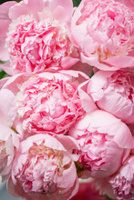 Lovely Flowers In Glass Vase. ...