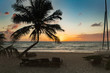 Sunrise with palm tree in the Mexican Caribbean, beach of Tulum