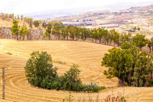 Staande foto Beige Sicilian Landscape