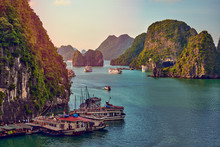 Tourist Junks In Halong Bay,Pa...