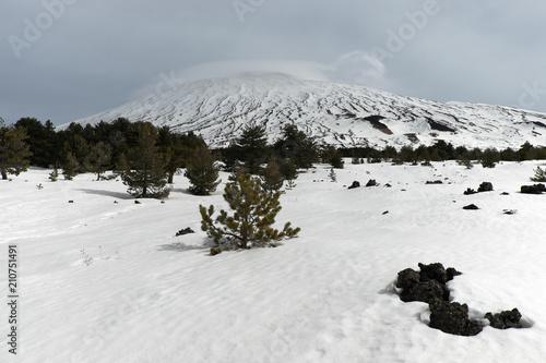 Fényképezés  Winter Landscape Fiera Plateau In Etna Park, Sicily