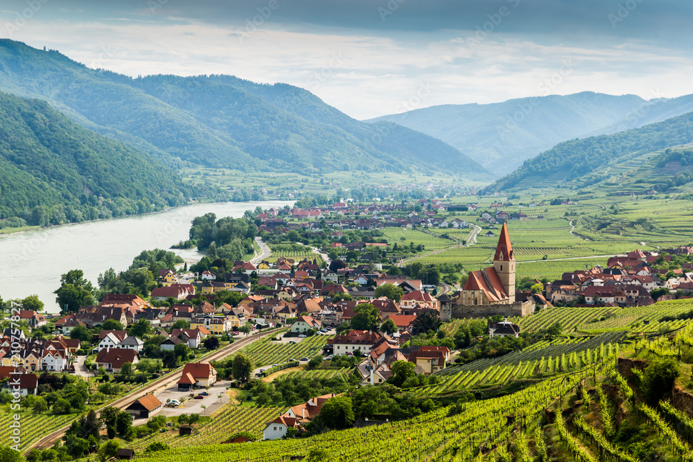 Fototapeta Scenic View into the Wachau with the river Danube and town Weissenkirchen in Lower Austria.