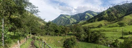 Keuken foto achterwand Zuid-Amerika land Panorama de la Vallée de Cocora, Salento, Colombie