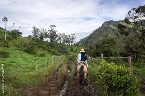 Keuken foto achterwand Zuid-Amerika land Promenade à cheval dans la vallée de Cocora, Colombie