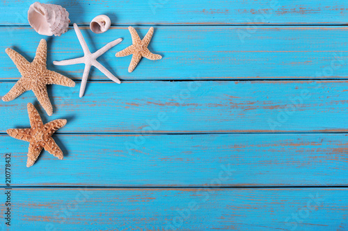 Poster Ecole de Danse Several starfish old weathered blue beach wood deck background