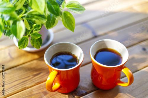Fotografie, Tablou 緑の植物とコーヒーカップ