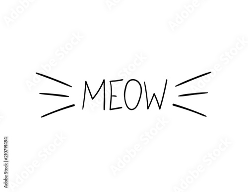 Photo Vector Meow Illustration, Cat Whiskers Hand Drawn Illustration.