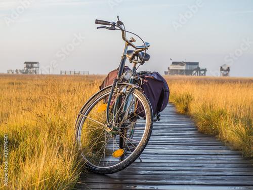 Staande foto Europa Mit dem Fahrrad an die Nordsee